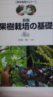 20100525214438.jpg